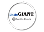 Little Giant water pumps